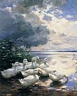 Alexander Koester Ducks in the Morning painting