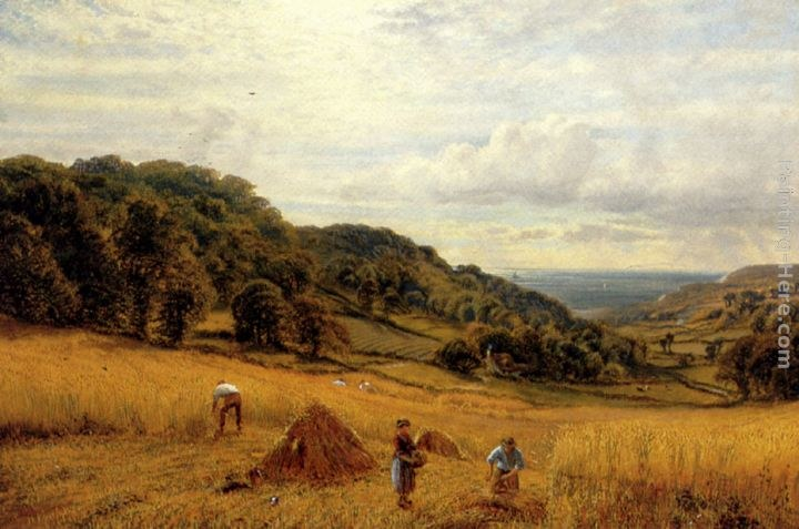 Alfred Glendening Harvesting At Luccombe, Isle Of Wight