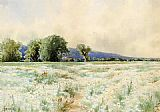 Alfred Thompson Bricher The Daisy Field painting