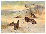 Archibald Thorburn Close of a Winter's Day painting