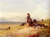 Archibald Thorburn Red Partridges painting