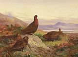 Archibald Thorburn The Morning Call painting