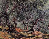 Claude Monet Olive Trees in Bordighera painting