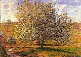 Claude Monet Tree in Flower near Vetheuil painting