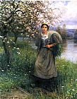 Daniel Ridgway Knight Apple Blossoms in Normandy painting