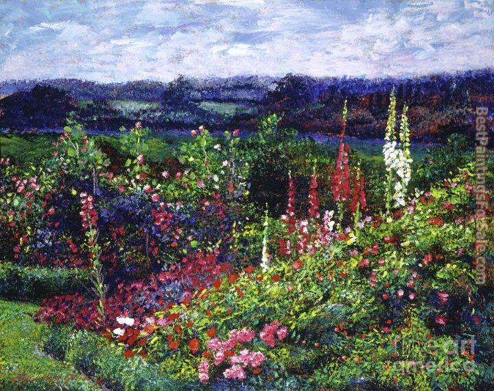 David Lloyd Glover Fields of Floral Splendor