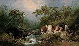 Three Dogs by a Brook