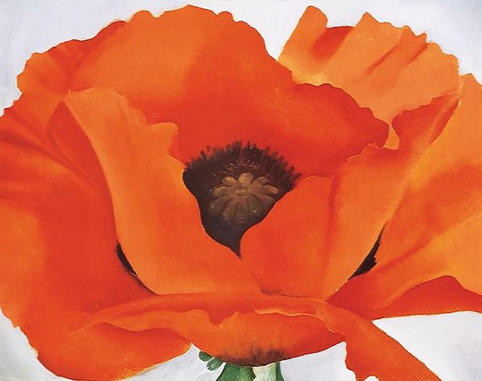 Georgia Okeeffe Red Poppy Painting Best Paintings For Sale
