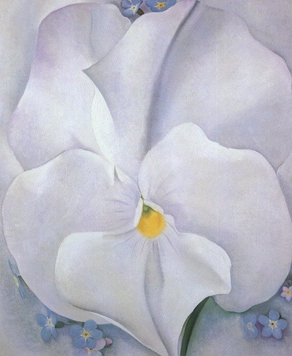 Georgia okeeffe white pansy painting best paintings for sale georgia okeeffe white pansy mightylinksfo