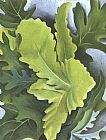 Georgia O'Keeffe Green Oak Leaves painting