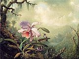 Martin Johnson Heade Heliodore's Woodstar and a Pink Orchid painting
