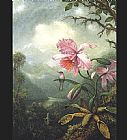 Martin Johnson Heade Hummingbird Perched on an Orchid Plat painting
