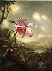 Martin Johnson Heade Hummingbird and Orchid, Sun Breaking Through the Clouds painting