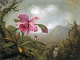 Martin Johnson Heade Orchid and Hummingbird near Mountain Waterfall painting