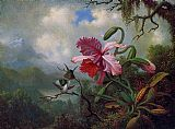 Martin Johnson Heade Orchid and Hummingbirds near a Mountain Lake painting