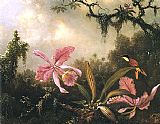 Martin Johnson Heade Orchids and Crimson Topaz Hummingbird painting