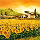 Mediterranean paintings - Valley of Sunflowers by Richard Leblanc