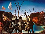 Salvador Dali Swans Reflecting Elephants painting