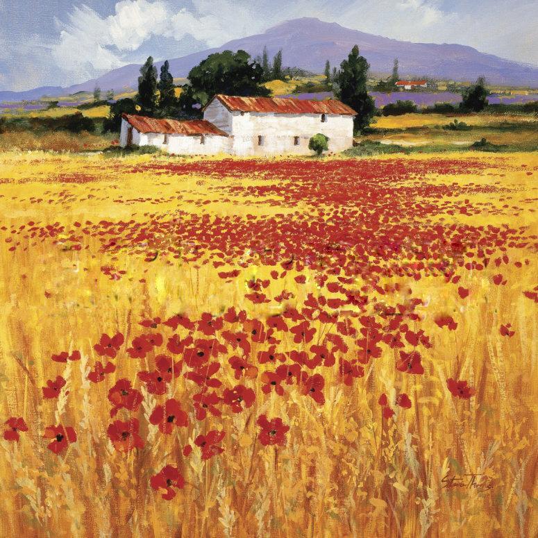 Poppy Oil Paintings Sale
