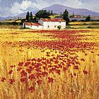 Mediterranean paintings - Poppies field by Steve Thoms