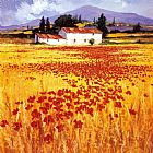 Mediterranean paintings - Poppies by Steve Thoms