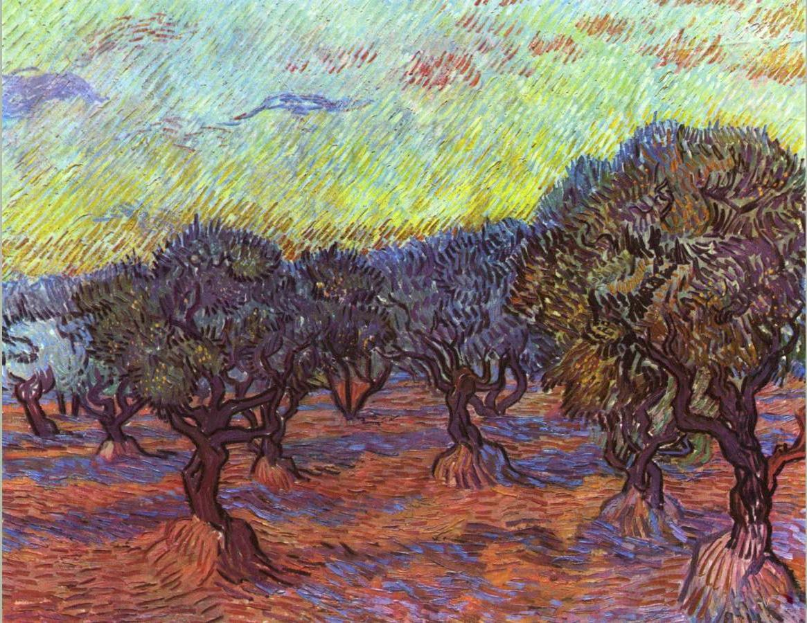 vincent van gogh olive grove painting best paintings for sale