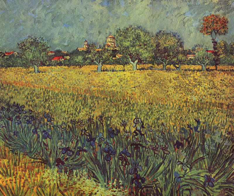 Vincent van Gogh View of Arles with Irises in the Foreground