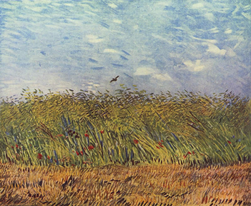 Vincent van Gogh wheat field with a lark 1887