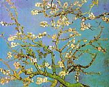 Vincent van Gogh Almond Branches in Bloom painting