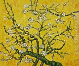 Branches of an Almond Tree in Blossom yellow