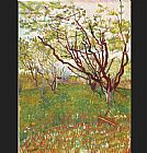 Vincent van Gogh Cherry Tree painting