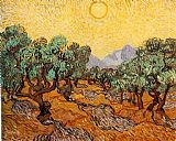 Vincent van Gogh Olive Trees 1889 painting
