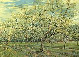 Vincent van Gogh Orchard with Blossoming Plum Trees painting
