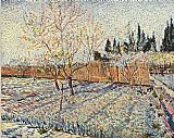 Vincent van Gogh Orchard with cypress painting