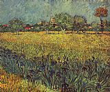 Vincent van Gogh View of Arles with Irises in the Foreground painting