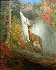Hunting paintings - Majestic Stag by William Holbrook Beard