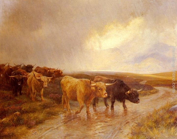 Wright Barker Highland Cattle
