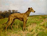 Arthur Wardle Champion Greyhound Dee Flint painting