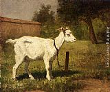 Henriette Ronner-Knip A Goat In A Meadow painting
