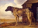 Paulus Potter The Wolf-Hound painting
