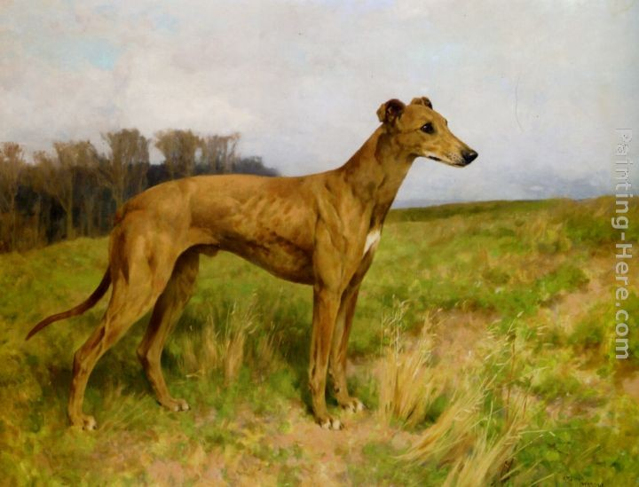 Arthur Wardle Champion Greyhound Dee Flint
