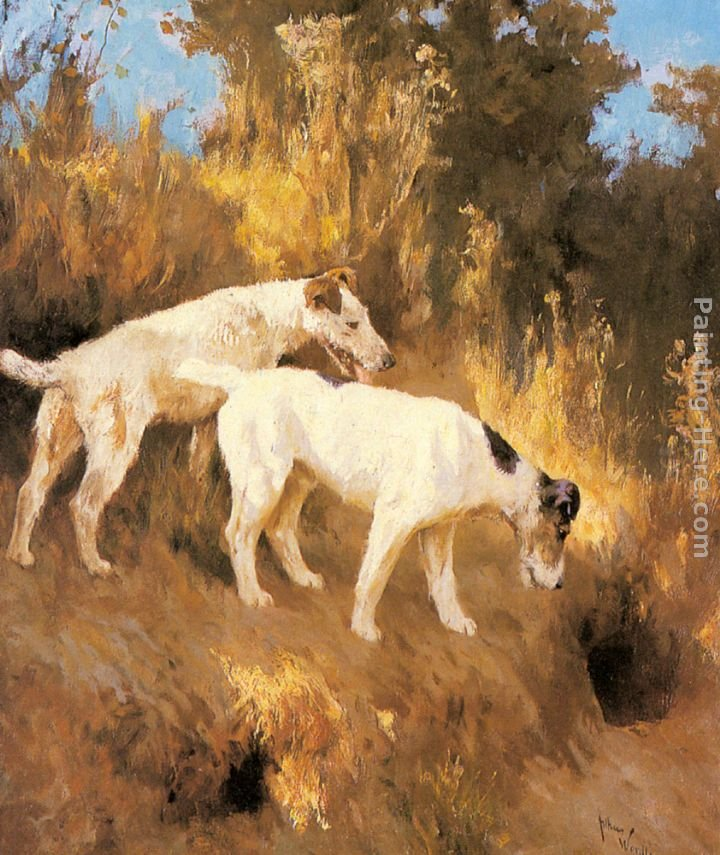 Arthur Wardle Terriers On The Scent