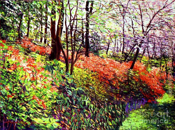 David Lloyd Glover Magic Flower Forest