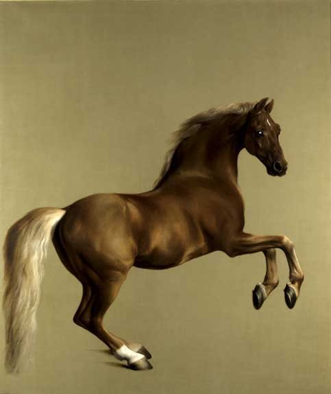 George Stubbs Whistlejacket