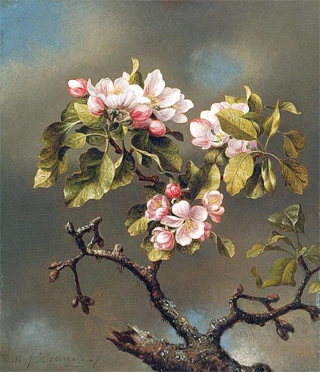 Martin Johnson Heade Branch of Apple Blossoms against a Cloudy Sky