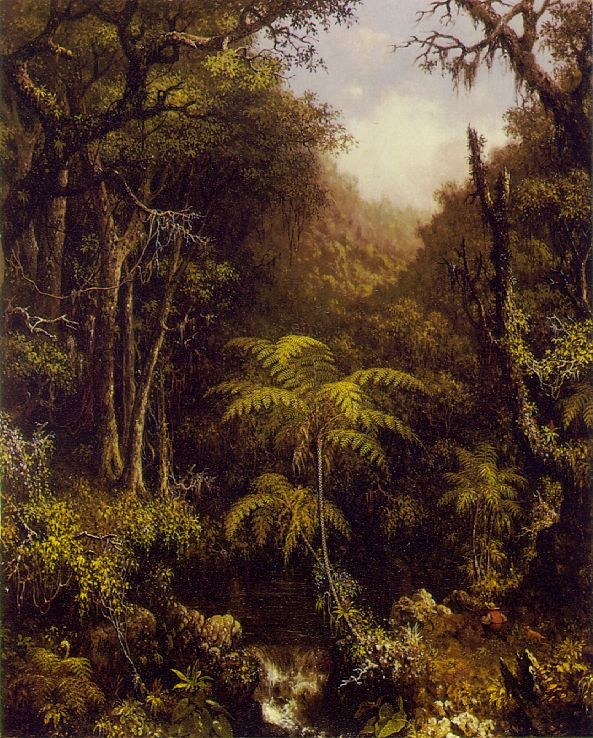 Martin Johnson Heade Brazilian Forest