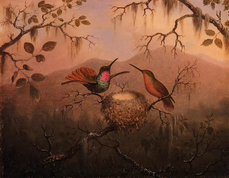 Martin Johnson Heade Two Hummingbirds at a Nest