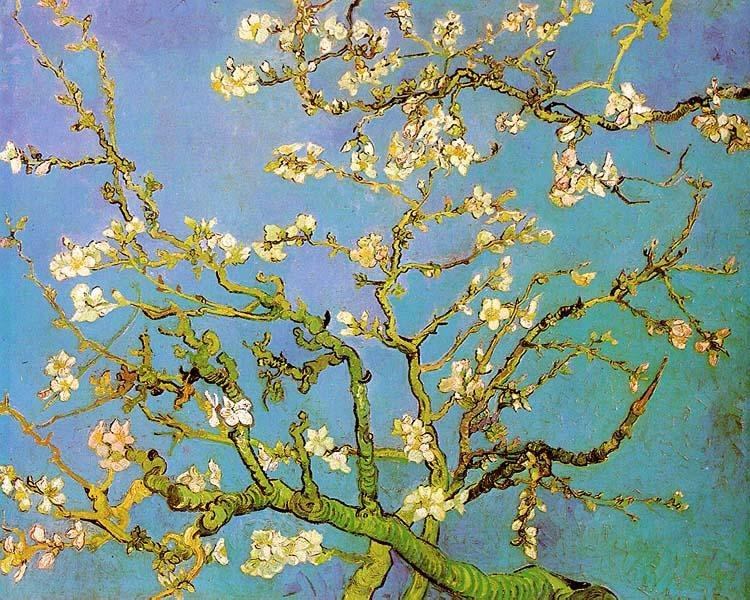 Vincent van Gogh Almond Branches in Bloom