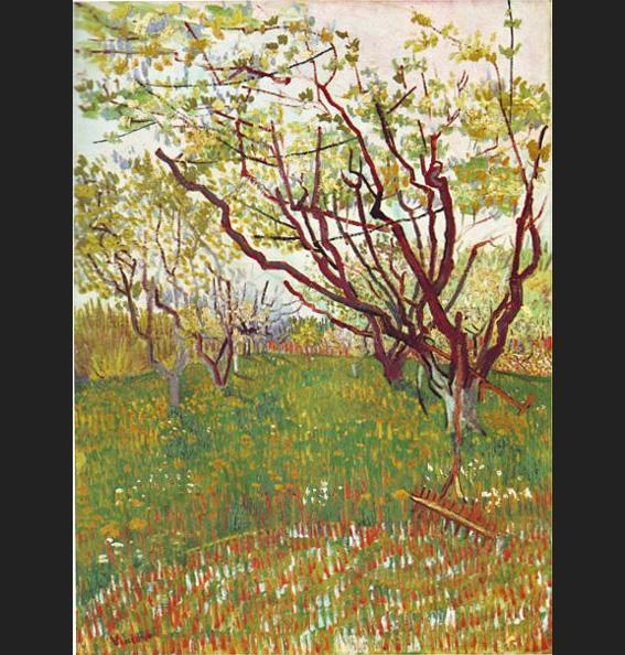 Vincent van Gogh Cherry Tree