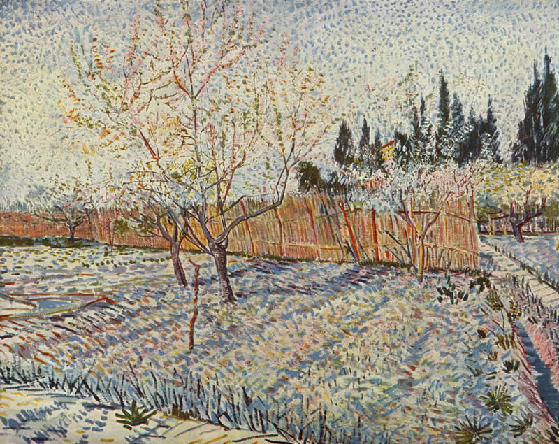 Vincent van Gogh field on winter